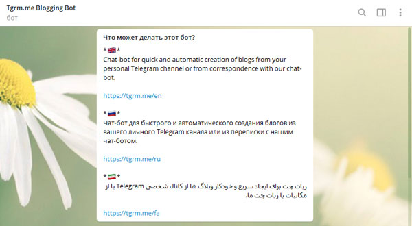 Старт бота TgrmmeBot для автоматического создания блогов ленты Telegram канала
